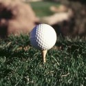 Summertime is a time for Golf….